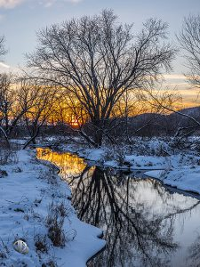 A golden sunset is reflected from a stream in winter