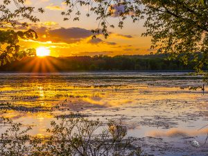 Rays of the Setting Sun over Semrad Slough (c) Timothy Jacobson